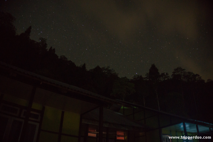 The cottages with the forest behind under the clear starry night